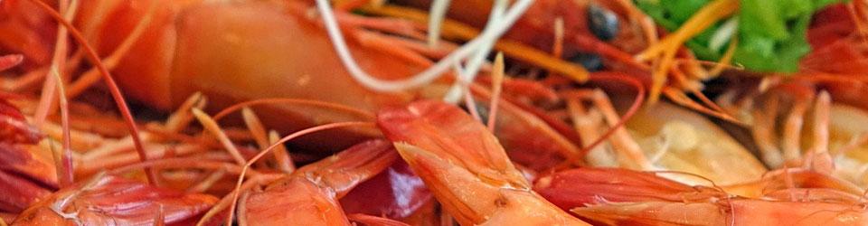 Köstlich zubereitete Garnelen im Ciao Ciao